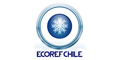 Ecoref Chile Eirl