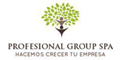 Profesional Group